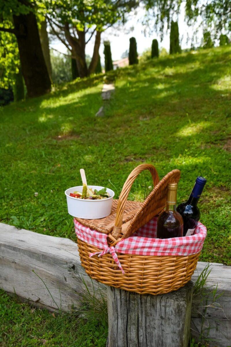 picnic diodona-min