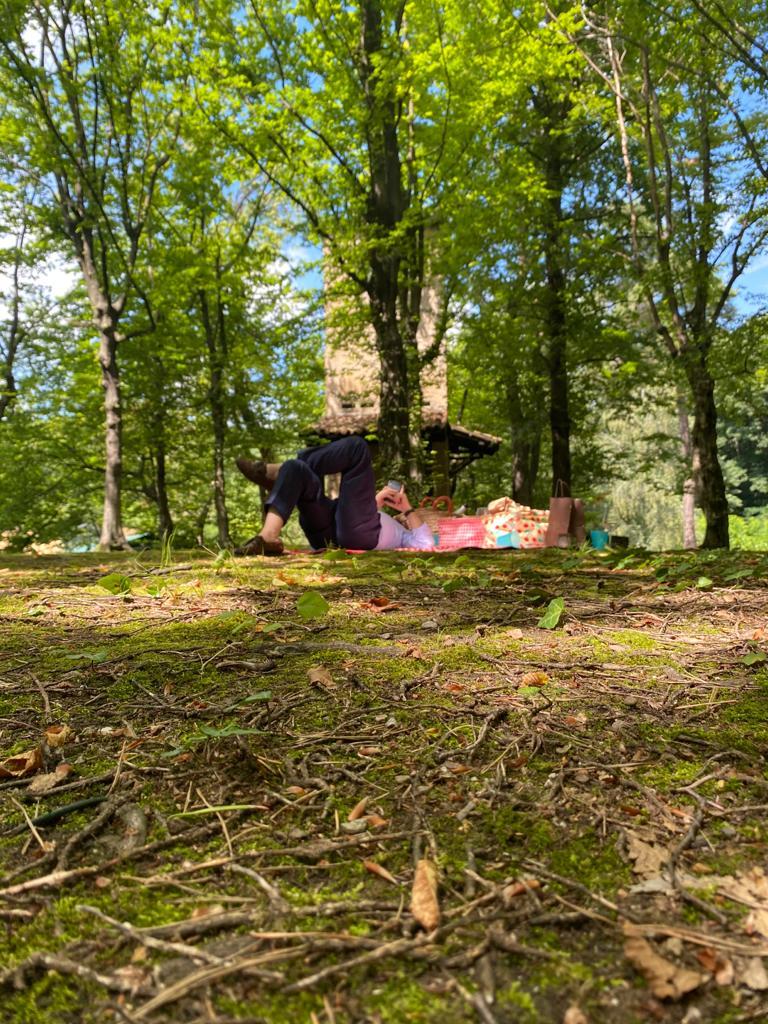 picnic nel bosco (2)